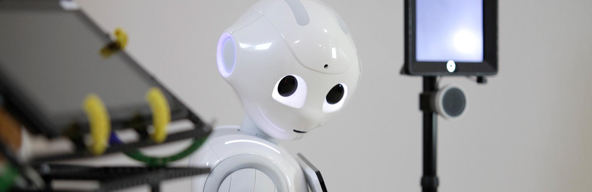 "Projektseminar   – Roboter ""Thea"" sucht den Weg"
