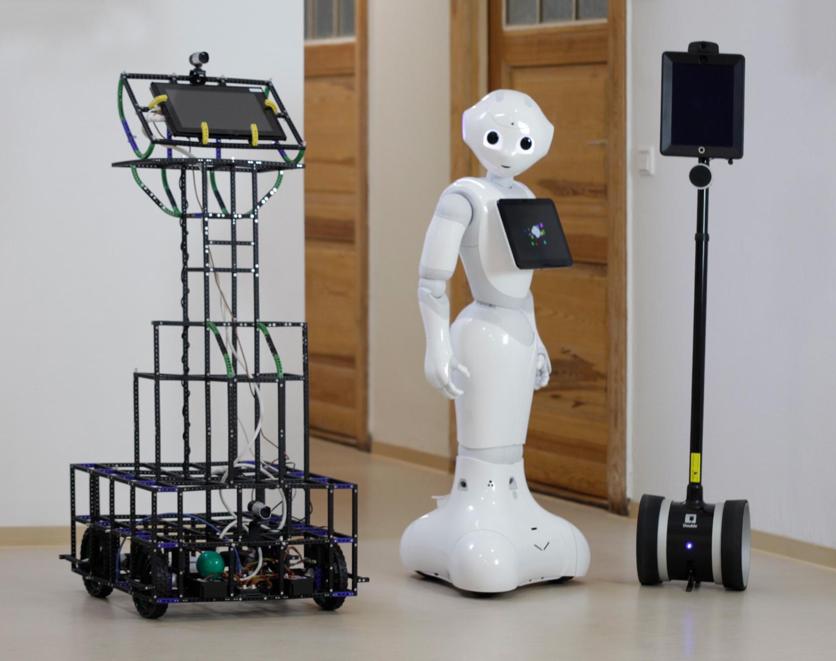 Cage Bot, Pepper, Telepräsenz